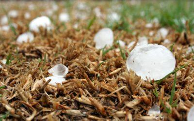 411: Hail Damaged Roofs